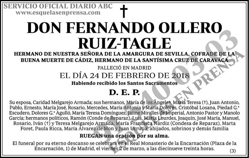 Fernando Ollero Ruiz-Tagle